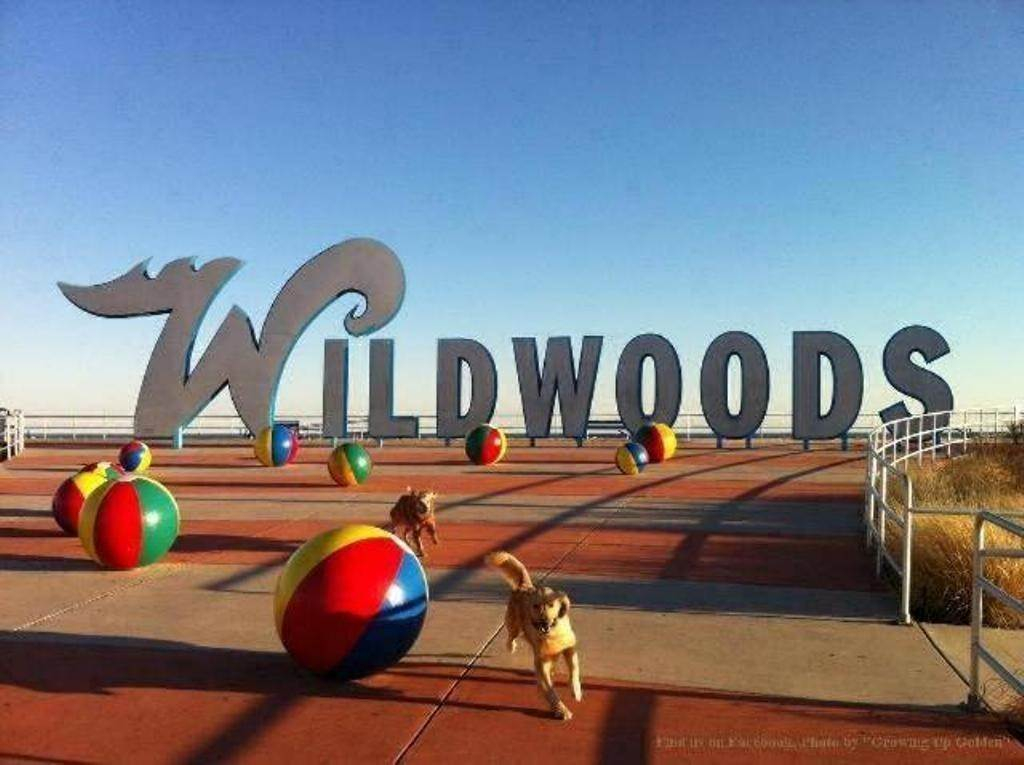 19. Condominiums for Sale at 8501 Atlantic Avenue Wildwood Crest, New Jersey 08260 United States